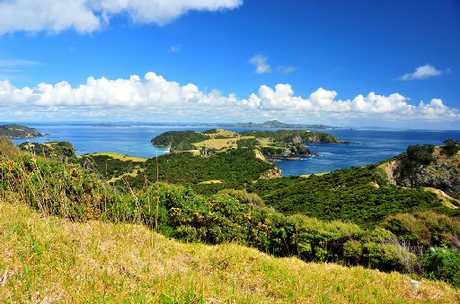 View from the track at the Northern Cliffs high point to Cape Wiwiki, at the northern tip of the Bay of Islands. Photo / Andrew Blanshard