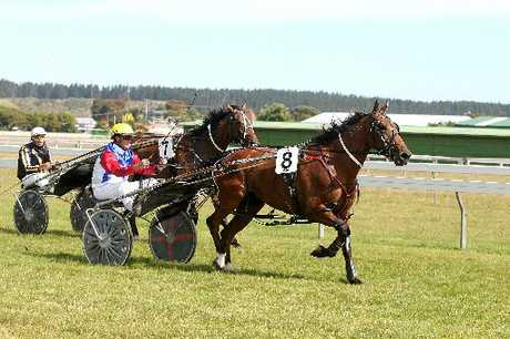 FAST FINISH: Shardon Operator wins the Wanganui Cup yesterday.PHOTO/BEVAN CONLEY