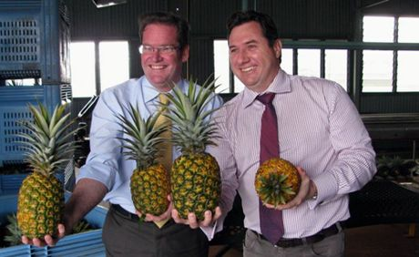 Agriculture, Fisheries and Forestry Minister John McVeigh and Environment and Heritage Protection Minister Andrew Powell have vowed to stand up to Canberra over its plans to allow fresh imports of Malaysian pineapples and Fijian ginger.