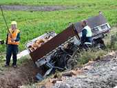 A male motorist is dead after a train crushed the cab of his light truck in a grisly collision at an unmarked level crossing south of Dannevirke late yesterday afternoon.