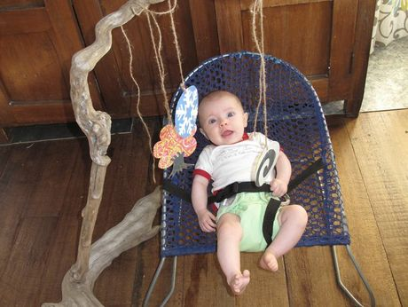 PLAY GYM: Verti's favourite toy is homemade from driftwood - her eco-thrifty play gym