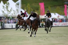 Polo returns to Clevedon in February 2013.