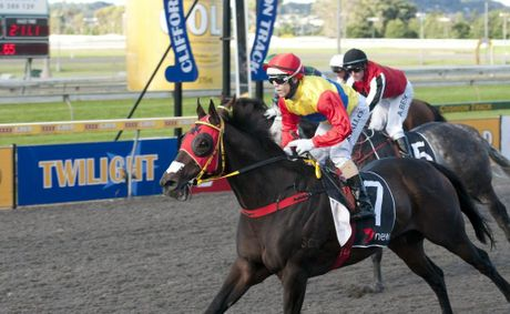 This year's Toowoomba Cup winner Musashi Of Mieko returns to Clifford Park on Monday night.