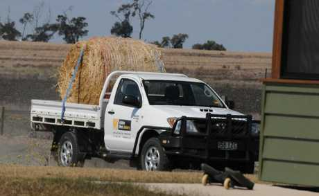 STILL MISSING: The Hilux utility stolen from the Hartwig's home on Christmas night. It has a Golden West Joinery logo on the side. Anyone with information should contact Dalby police.