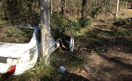 A car hit trees four metres above the ground before coming to rest on its wheels when it left the Pacific Highway at Glenugie this afternoon. The driver was taken to Coffs Harbour Hospital. Photo: JoJo Newby.