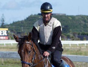 GIDDY UP!: Righteo, ridden here by Derek Allen, will be racing at tomorrow's Ruakaka meeting in front of a packed crowd.
