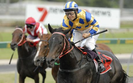 Miss Imagica and Nori Yamada race to victory in last season's Fillies and Mares Quality Handicap (1200m) at Clifford Park.