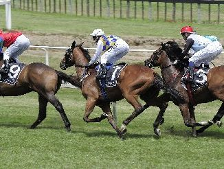 Jenny Whiteside (centre) was involved in the collision at Tauranga races on Wednesday