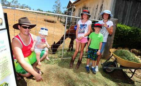 Enjoying A Day on the Farm at Cedar Galleries are (from left) Curtis and Bruce Smith, 8 months, Megan Groves, 9, Owen Smith, 6, and Rachel Groves, 11.