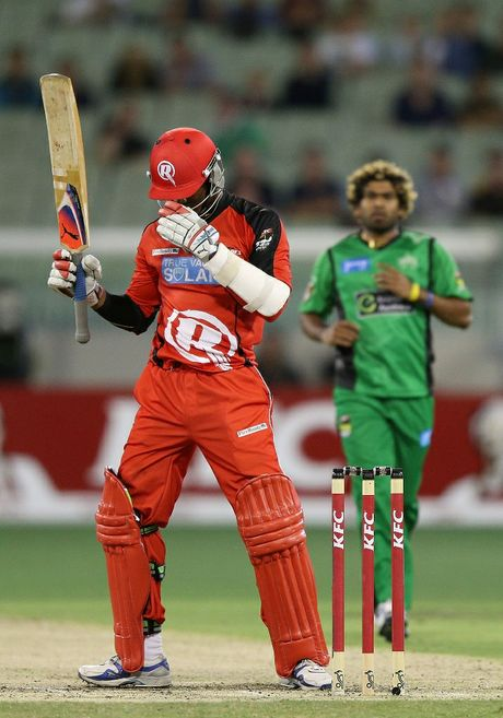 Marlon Samuels of the Renegades gets hit in the head by Lasith Malinga of the Stars during the BBL match between the Melbourne Stars and the Melbourne Renegades at Melbourne Cricket Ground on January 6, 2013.