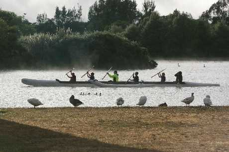 BANNED: Rowers will not be able to train on Henley Lake until the blue-green algae has abated. PHOTO/FILE