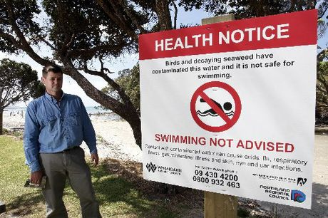 Andrew Carvell says decaying algae is largely responsible for the smell at the Waipu Cove rivermouth.