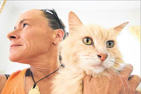 Tauranga pet parent Pam Andresen is upset Tauranga SPCA refused to take in an abandoned cat.