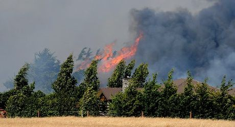 Firefighters fight fires in the Prebbleton area of Canterbury near Christchurch. 