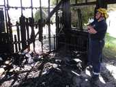 Forty years of sporting history have been destroyed in an arson attack on a shed containing Swimming Northland's archives.