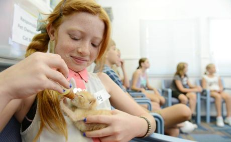 Riley McLennan at a cat care education session at the RSPCA feeding Phoenix, the three week old kitten.