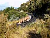 Napier MP Chris Tremain is backing KiwiRail's move to close the Gisborne to Napier rail line and says the Government has already spent enough on upgrading the national rail network.