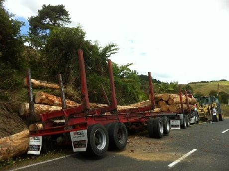 MESS: Logs fell from this truck on Pataua North Rd in Whangarei yesterday.
