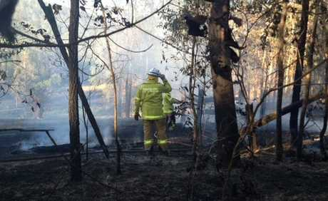 SEVERAL firefighting crews are battling a blaze burning close to Newspaper Hill Rd, Belli Park.