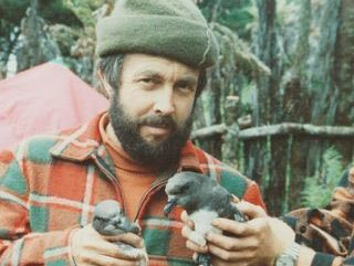 NO GHOST: Whangarei ornithologist David Crockett with a taiko that he rediscovered 35 years ago this month on the Chatham Islands after they were thought to be extinct.