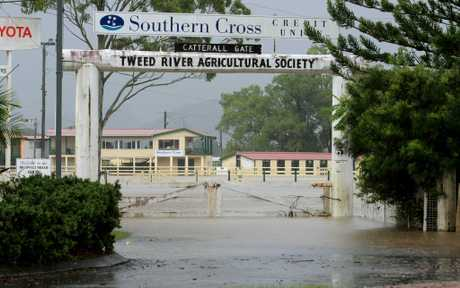 The Murwillumbah Showgrounds under flood. The State Govt has just allocated $3580 towards repairs to buildings on the site from damage caused by the 2010 floods.