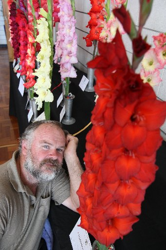 GLAD ALL OVER: Wayne Hughes and some glorious gladioli in 2009. They grow brilliantly in Wanganui, just in time for the summer show. PHOTO/FILE