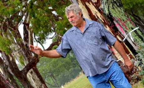NOT HAPPY: Larry McArthur thinks it&#39;s an outrage that these trees are being investigated to be cleared.