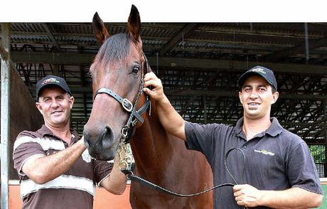 Yandina-based horse trainers Graham Pollock and his son Darryl have big plans for Delago Pilli.