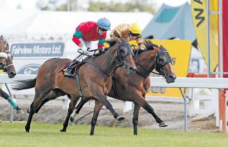 Annie Higgins winning the Waikato Times Gold Cup in December. She looks a threat in tomorrow's Wellington Cup if she can recapture that form. PHOTO/APN