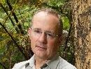 KAURI CAMPAIGNER: Labour Party MP Phil Twyford with a diseased kauri tree in the Waitakere Ranges.