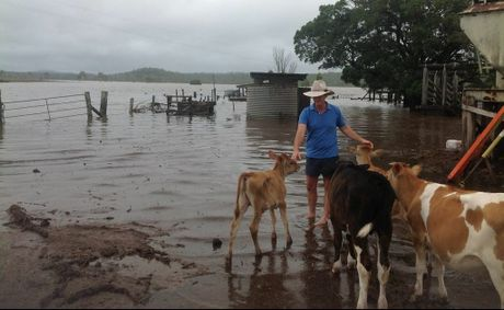 BlazeAid volunteers will stay in the Banana Shire to help farmers rebuild after the floods.