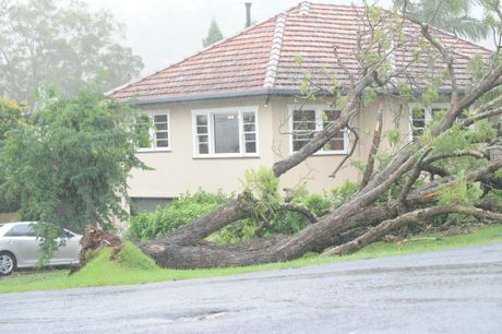 Lismore City inundated with heavy rain and wind leading to localised flooding and trees being blown over. Town was quiet with some residents braving the rain to get supplies. Photo Marc Stapelberg / The Northern Star