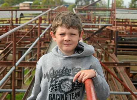 NEXT GENERATION: Nine-year-old Alex McMahon from Warwick lent a hand to his dad, Scott McMahon, and grandad, Kevin McMahon, at last week's cattle sale.