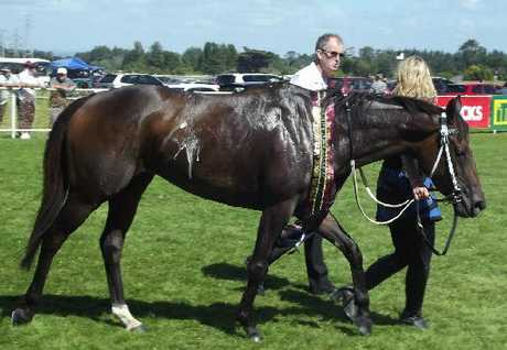 2012 Stratford Cup winner Les Sylphides.