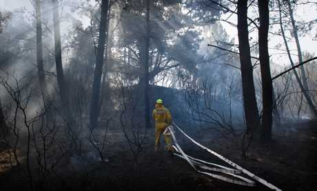 LIGHT NO FIRES: The Far North hasn't had a calamitous fire so far this summer, and the total fire ban now in place is designed to reduce the risk of one.