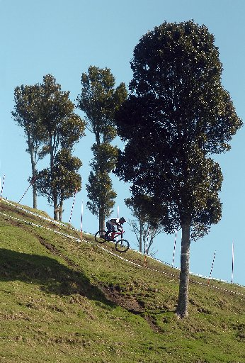 Downhill training on Mount Ngongotaha at the UCI Mountain Bike World Championships in Rotorua.