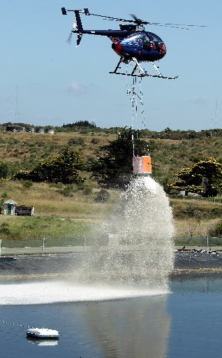 AIR ATTACK: The application of lime may be the answer to the foul odour coming from the city's wastewater treatment ponds. PHOTO / STUART MUNRO