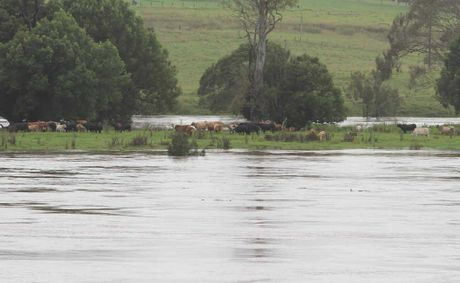 A succession of floods is making life a misery for farmers.