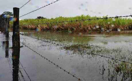 WET AND WILD: Flood-affected primary producers in many parts of Queensland have been offered fee deferral on a range of government charges.