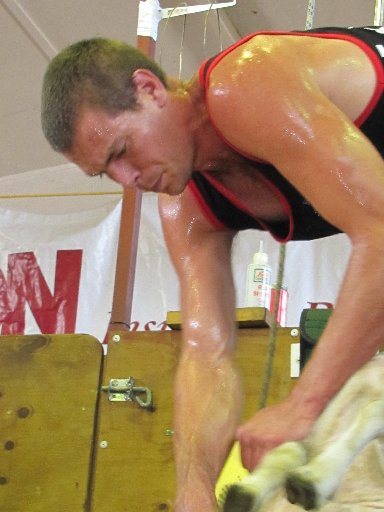 TOP SHEARER: Rowland Smith competing in the Rangitikei Shearing Sports on Saturday.PHOTO/SUPPLIED