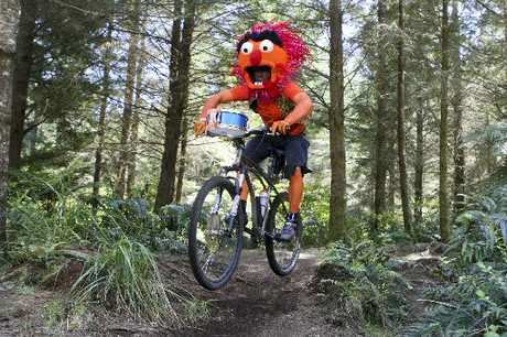 Timo St Anton, from Christchurch, was a crowd favourite at the 2010 Singlespeed World Championships at Whakarewarewa Forest.
