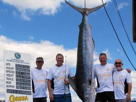 Neil Smith (left), Keith Redman, Dave Dodge and Brian Jenkinson, all of Napier, with a 128kg striped marlin caught by Mr Redman. Photo / Doug Laing