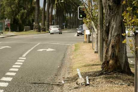LOUD SMASH: A marker post lies on the ground after a car hit it on Kennedy Rd, Napier, on Saturday. PHOTO/WARREN BUCKLAND HBT130914
