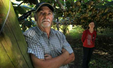 Pukehina kiwifruit grower Ross Bawden and wife Dell know only too well the devastating effects Psa can have on the mental health of growers.