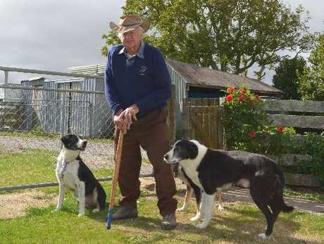 Bill Reader with his dogs Fin, Thyme and Boss and one of his over-40 sticks, a collection he began many years ago.