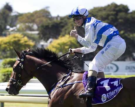 FOR SALE: Avondale Guineas winner Valbuena may soon be racing overseas.PHOTO/FILE