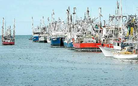TIME OUT: Hervey Bays fishing trawler fleet have also been affected by the floods.