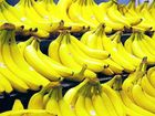 LAST week's visit by executives of the Australian Banana Growers Council (ABGC) has done little to address concerns of local growers.