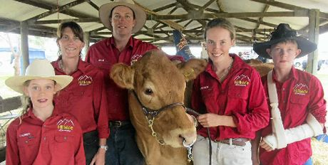RED TEAM: Lauren, Susan, Craig, Emma-Lee and Hayden Smith, of Hillside Limousin stud, Nobby, exhibited at this year's Clifton Show and are the new kids on the block on the stud cattle show scene. They are pictured with their 18 month old Limousin heifer, Hillside Gracie.