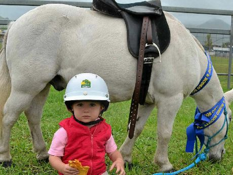 GROUNDED: Little Erin Fraser, 2, with her horse Bonzai after her first day competing at the Killarney Show.